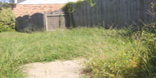 Overgrown Grass/Weeds (City Code 23-50b); Accumulation of Trash and Garbage (City Code 23-50a)