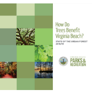 state of urban forest report