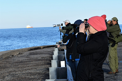 Bird watchers on Chesapeake Bay Bridge Tunnel Island 4