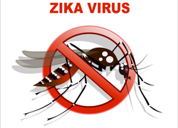 Just Say No To Zika