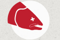 "icon of dead salmon - indicates don't don't be a bike salmon ""traveling upstream"" against flow of traffic"